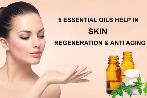 Top 5 essential oils help in skin regeneration and anti ageing